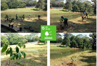 Konservasi Air, Flora, dan Fauna di UI berkaitan dengan SDGs no.15